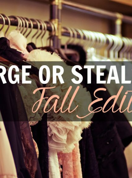 Splurge vs. Steal: Fall Edition