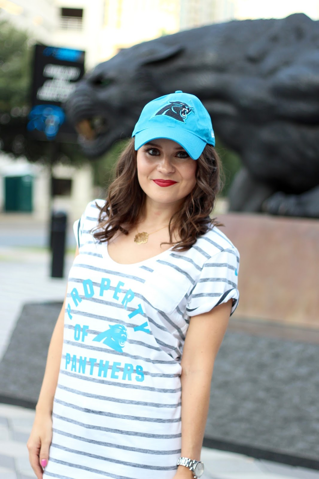 NFL Fan Style Carolina Panthers