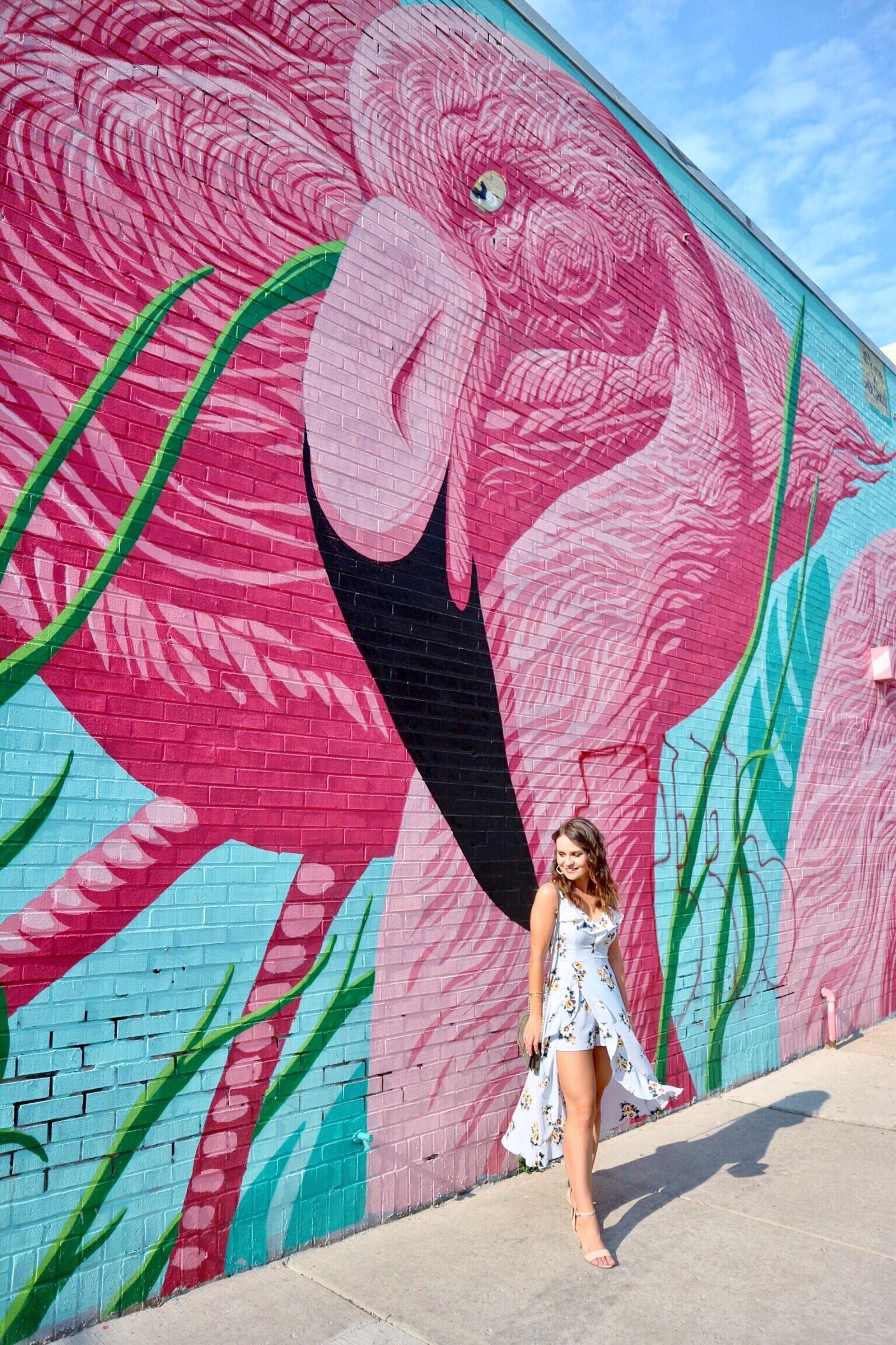 chicago flamingo wall